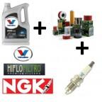VALVOLINE+HIFLO+NGK